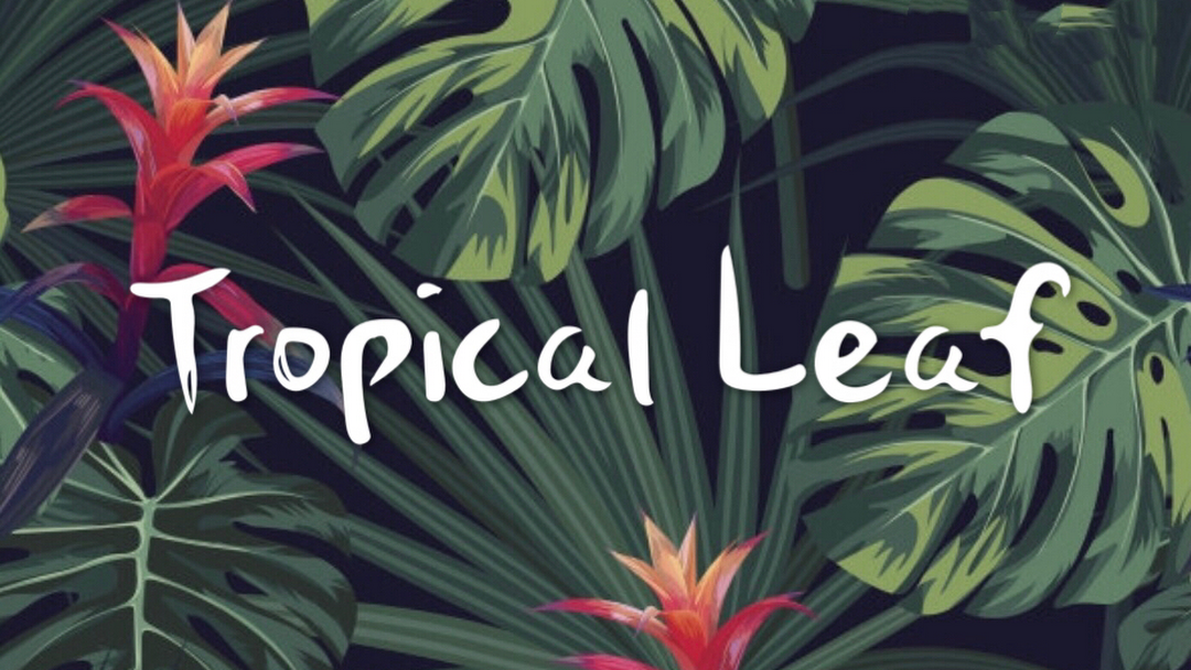 Tropical Leaf Nail Salon In Brooklyn Pikbest has 3796 tropical leaves design images templates for free. tropical leaf nail salon in brooklyn