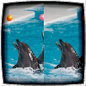 Difference Finder Dolphins icon