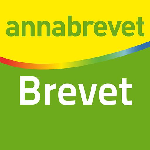 Annabrevet Brevet 2018 Icon