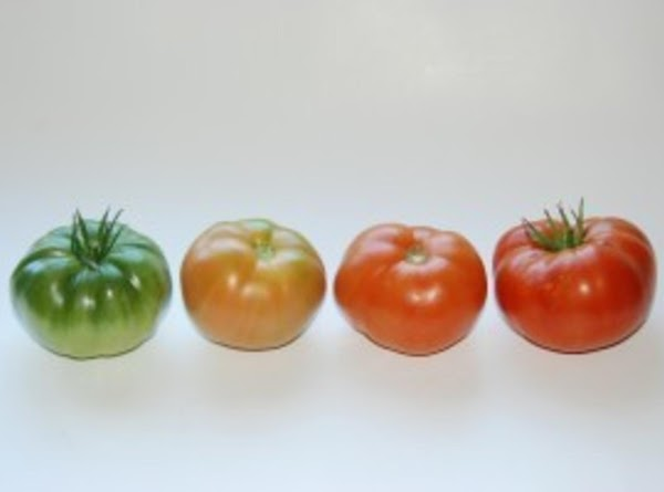 Once a week (or more often), pull out the boxes, unwrap each tomato in...