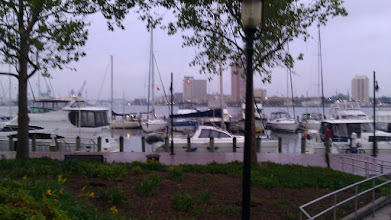 Photo: Rainy and greay after 5:00 pm, just like the weather service said.