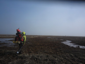 Photo: walking the mud flats back to anchorage on the north side of cook inlet