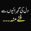 Funny Urdu Status icon