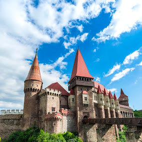 Old medieval castle by Stefan Sorean - Buildings & Architecture Public & Historical ( castle, dracula, exterior, guard, destination, tourism, historical, romania, monument, building, hunedoara, corvinesti, brick, landmark, sunny, europe, ruin, citadel, architecture, tower, palace, sky, roof, transylvania, gothic, famous, historic, old, hunyad, medieval, aged, heritage, history, ancient, vlad, stone, fortress, museum, turrets, keep, cloudscape, bridge, gate, travel, fortification, architectural, royal, landscape )