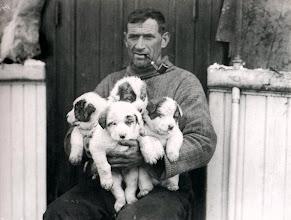 Photo: Tom Crean con unos cachorros