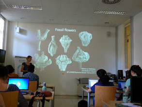 Photo: Maria gave a lecture on fossil flowers and reconstructing their relationships.