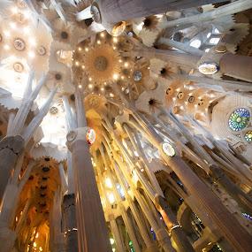 Sagrada Familia by VAM Photography - Buildings & Architecture Statues & Monuments ( spain, church, barcelona, gaudi, travel, architecture, interior,  )