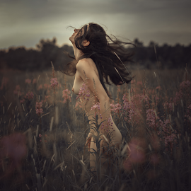 Wind by Dmitry Laudin - Nudes & Boudoir Artistic Nude ( beauty, grass, nude, girl, evening, summer, wind )