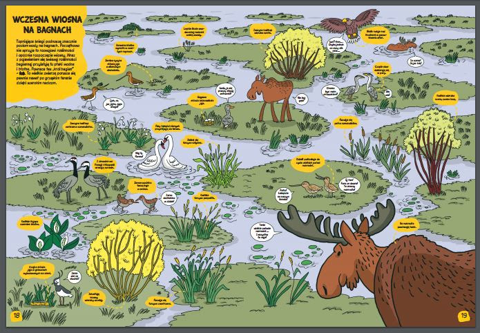 O rety! Przyroda - wiosna na bagnach