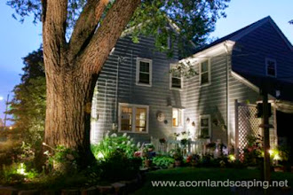 Photo: Landscape Lighting, Rochester NY, #LEDLighting Designer, Installer Rochester NY.  Acorn Ponds & Waterfalls. Certified Aquascape Contractor since 2004. Visit our website www.acornponds.com and please give us a call 585.442.6373.  Specializes in all phases of landscaping. #LandscapeLighting installation and design in the Rochester NY area is one of our specialties. Outdoor low voltage lighting for home and business or a complete landscape design, we can do it all.  For more info about Landscape Lighting please click here: www.acornponds.com/led-lighting.html  Acorn Ponds & Waterfalls of Rochester NY, 585-442-6373, is a Certified Aquascape Contractor, Landscape Designer, Outdoor Lighting Designer, Installer, Builder, Contractor and Design Service Company from Rochester, NY. We have professional Installation and Design Services available for the following: Landscape Design Outdoor Room Design Backyard Ponds and Waterfalls Design & Construction Patios and Walkways: Paver, Stone, Brick Low Voltage Landscape Lighting LED Landscape Lighting Swimming Ponds Ecosystem Ponds LED Outdoor Lighting Retaining Walls Fountains Water Features Pondless Waterfalls Pond Maintenance and Design Aquatic and Under Water LED Lights Bubbling Boulders and Urns Natural Stone Patios and Rock Gardens Garden Ponds Outdoor Kitchens Pizza Ovens Fire Pits Fish or Koi Ponds Waterfall Ponds Low Maintenance Plantings Commercial Landscape Design Residencial Landscape Design Drainage Issues, Solutions Aquascape Rainwater Collection Systems  Servicing: Pittsford NY, Penfield NY, Brighton NY, Fairport NY, Webster NY, Greece NY, Victor NY, Henrietta NY, Irondequoit NY, Rush NY.  Check out our photo albums on Pinterest here: www.pinterest.com/acornlandscape/  Click here for a free Magazine all about Ponds and Water Features: http://flip.it/gsrNN  Contact Acorn Ponds & Waterfalls now! 585.442.6373 or please click here: www.acornponds.com/contact-us.html