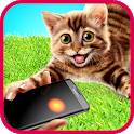 Laser game for cat icon