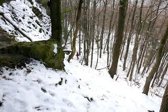 Photo: Vadcsapáson a Macska-lyuktól D-re, a Szentendrei-barlang felé.