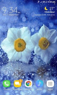 Flowers In Rain LWP - náhled