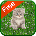 Kitten Games for Girls – Free 1.0 for Android