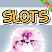 Cool Catz Cat Bonus Slots Free