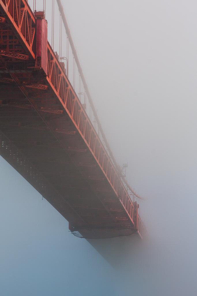 L'anno della nebbia di androx3k
