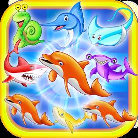 дельфин бой
