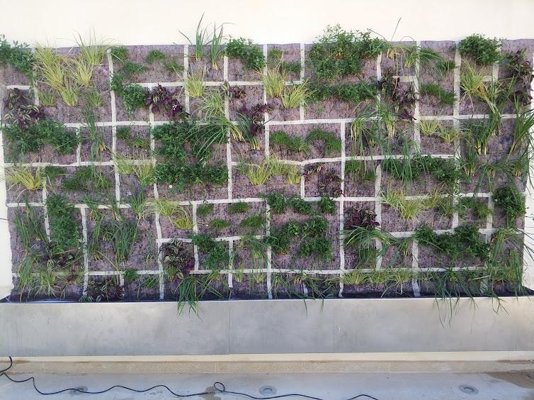 Jardín vertical finalizado