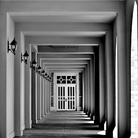 by Tammy Little Elam - Buildings & Architecture Public & Historical (  )