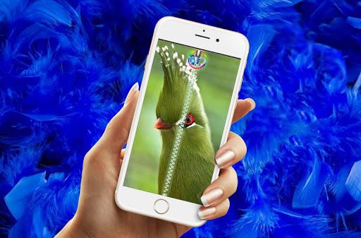 Bird Zipper Lock Screen