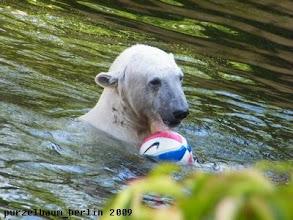 Photo: Ein neuer Ball wird ins Spiel gebracht ;-)