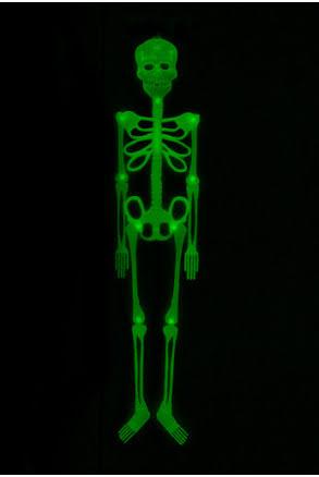 Skelett, självlysande