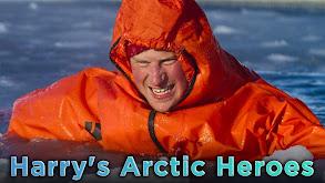 Harry's Arctic Heroes thumbnail