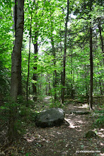 Photo: The hiking trail through the woods at Molly Stark State Park by Bill Steele