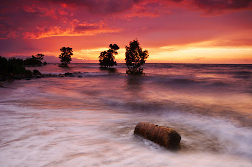 floating log by Rodrigo Layug - Landscapes Waterscapes ( nature, sunrise, seascape, log )