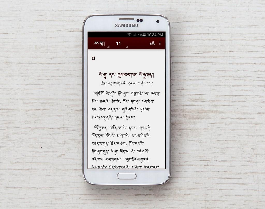 Ladakhi Bible- screenshot