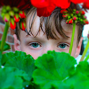 The Eyes by Amelia Rice - Babies & Children Children Candids ( hiding, plants, flowers, eyes,  )