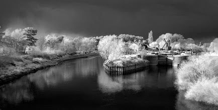 Photo: Lock Island, Worcester, UK  (Clive Haynes)