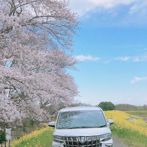 アルファード AGH30Wのカスタム事例画像 TAKAHIROさんの2020年03月28日11:41の投稿