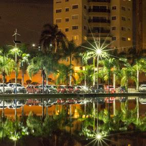 Reflejos al anochecer by Lidia Noemi - City,  Street & Park  Night ( lago, noche, reflejos, palmeras, luces,  )