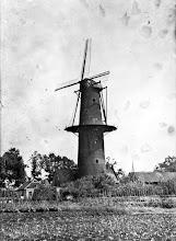 Photo: 1927 Molen Liesboslaan