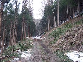 林道は除雪されている