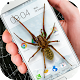 Spider in phone funny joke Apk