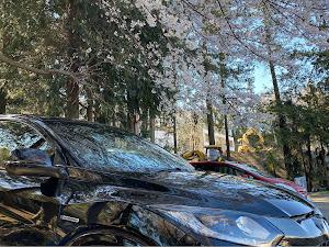 ヴェゼル RU3 ハイブリッド RSのカスタム事例画像 堀直己さんの2020年03月25日07:57の投稿