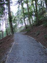 Photo: Подымаюсь на ближайшую гору Uetliberg