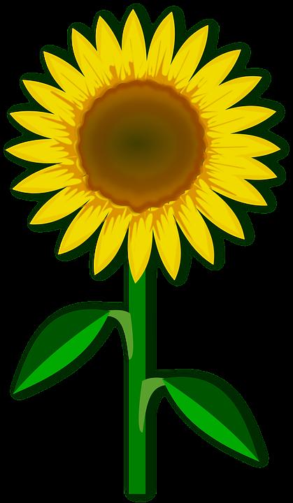 Clip Art, Flor, Flora, Flower, ...