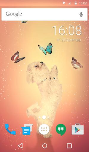 Playful Dog Animated Keyboard + Live Wallpaper 3.33 screenshots 6