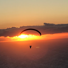 South Africa Baloon by Mylene Rizzo - Sports & Fitness Other Sports ( capetown, flight, southafrica, baloon, sunset,  )