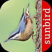 App Icon for Oiseau Id: Oiseaux de France App in Czech Republic Google Play Store
