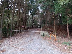 駐車地横の林道を進む