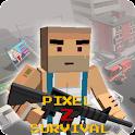 Pixel Z Survival