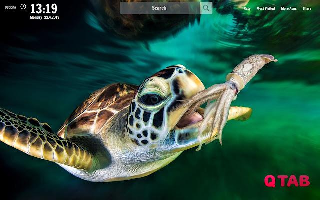 Sea Turtle New Tab Sea Turtle Wallpapers