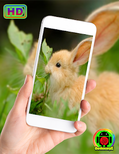 Cute Animals Wallpaper (HD) for PC-Windows 7,8,10 and Mac apk screenshot 1