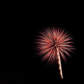 by Karl Jones - Public Holidays July 4th ( clean burst )