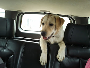 Photo: On the way back from her boarding place (nearly 7 months)