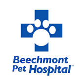 Beechmont Pet Hospital